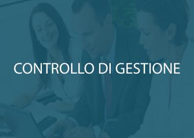 Controllo_gestione